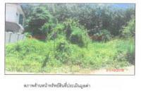 ที่ดินเปล่าหลุดจำนอง ธ.ธนาคารกรุงไทย คอหงส์ หาดใหญ่ สงขลา