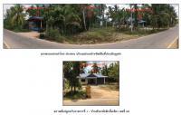 ที่ดินพร้อมสิ่งปลูกสร้างหลุดจำนอง ธ.ธนาคารกรุงไทย ลำไพล เทพา สงขลา